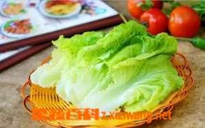 生菜的营养价值及功效